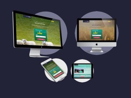 World Solar: Inbound Marketing & Website