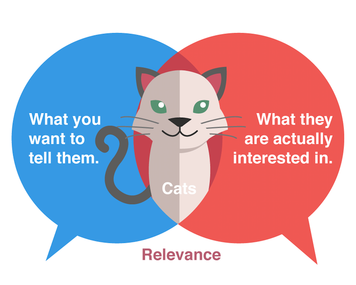 Social Media, Cats and Content Marketing